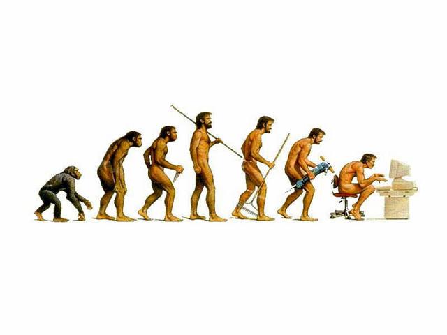 进化.jpg